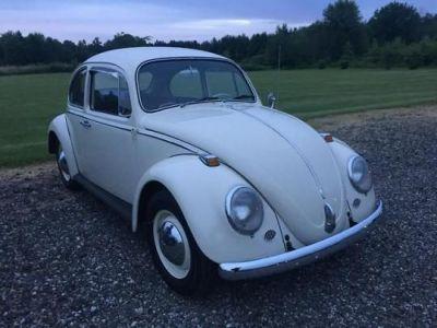 A 1955 VW Bug, looking good!