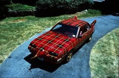 Behold, the Plaid Thing. I have no idea.